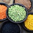Как сварить чечевицу: красную, зеленую, желтую, коричневую. ТОП 12 лучших рецептов.
